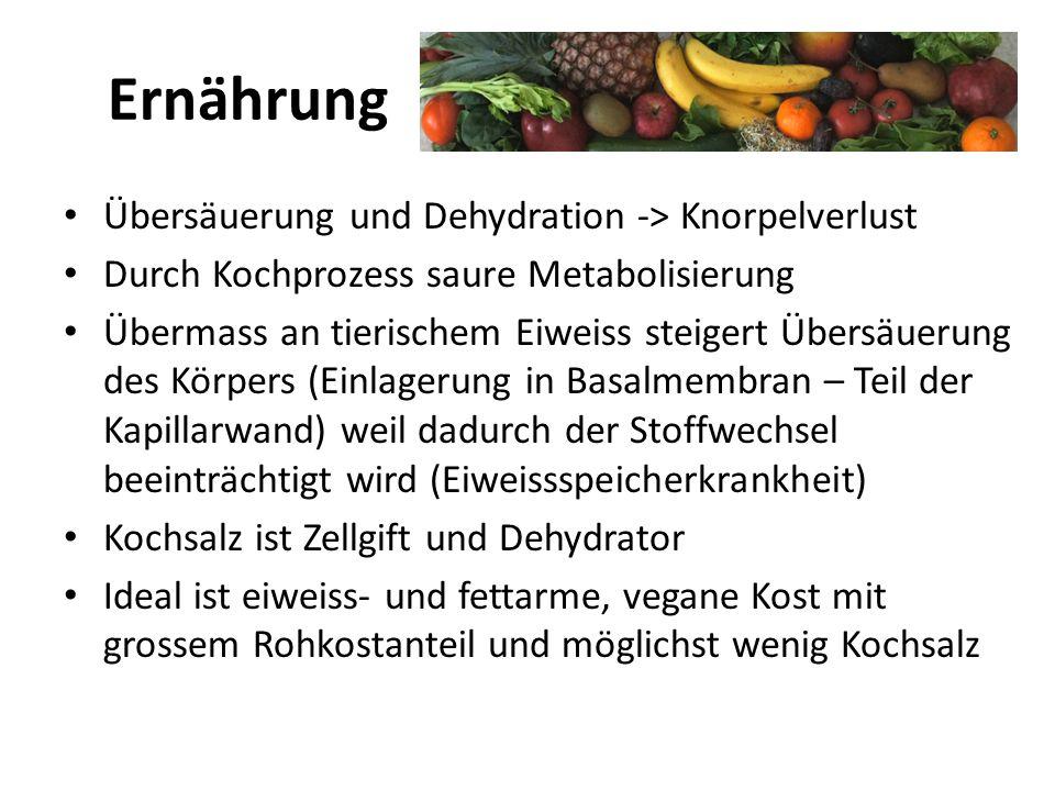 Ernährung Übersäuerung und Dehydration -> Knorpelverlust Durch Kochprozess saure Metabolisierung Übermass an tierischem Eiweiss steigert Übersäuerung