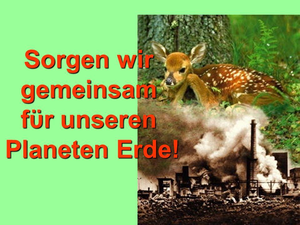 1.Wie ist der Zustand der Umwelt in unserem Land.In der Welt.