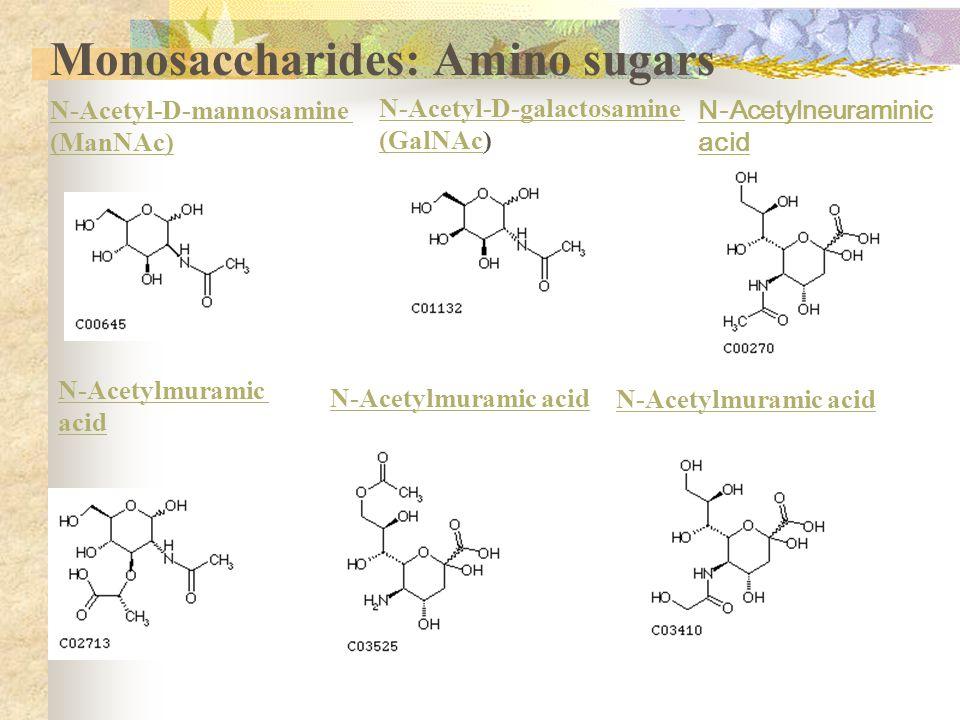 N-Acetyl-D-glucosamine (GlcNAc) N-Acetyl-D-mannosamine (ManNAc) N-Acetyl-D-galactosamine (GalNAc) N-Acetyl-D-mannosamine (ManNAc) N-Acetyl-D-galactosamine (GalNAc(GalNAc) N-Acetylneuraminic acid N-Acetylmuramic acid N-Acetylmuramic acid