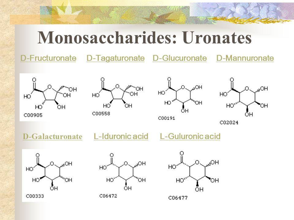 Monosaccharides: Uronates D-FructuronateD-TagaturonateD-GlucuronateD-Mannuronate D-Galacturonate L-Iduronic acidL-Guluronic acid