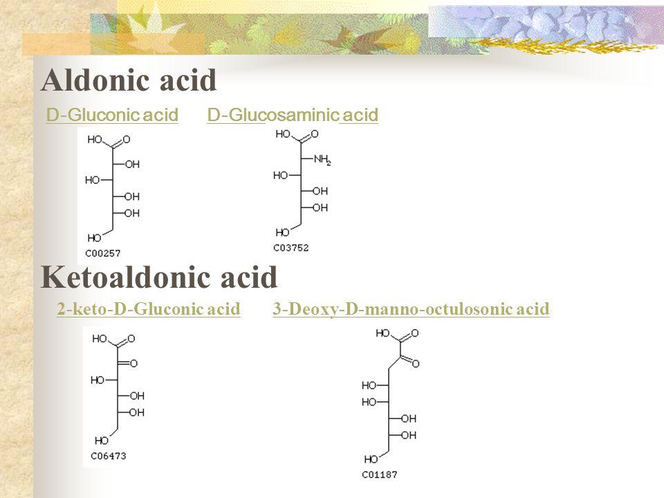 Aldonic acid D-Gluconic acidD-Glucosaminic acid Ketoaldonic acid 2-keto-D-Gluconic acid3-Deoxy-D-manno-octulosonic acid