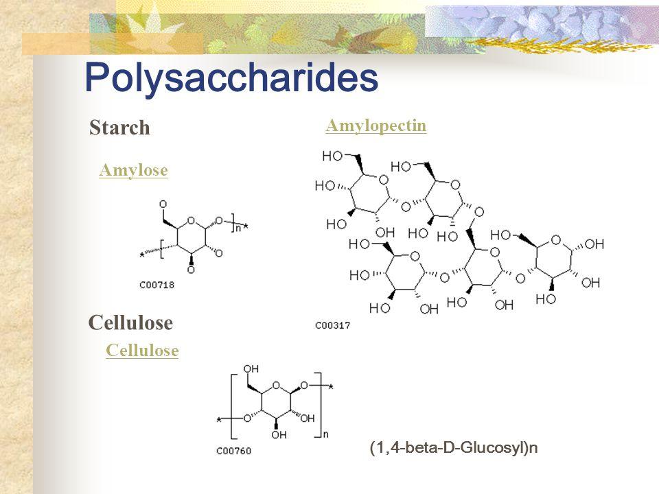 Polysaccharides Starch Amylose Amylopectin Cellulose (1,4-beta-D-Glucosyl)n