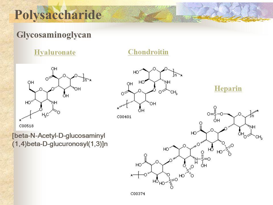 Polysaccharide Glycosaminoglycan Hyaluronate [beta-N-Acetyl-D-glucosaminyl (1,4)beta-D-glucuronosyl(1,3)]n Chondroitin Heparin