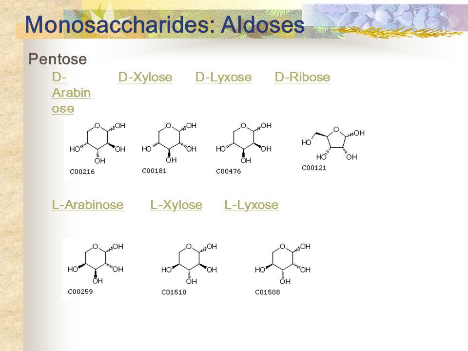Monosaccharides: Aldoses Pentose D- Arabin ose D-Xylose D-Lyxose D-Ribose L-Arabinose L-Xylose L-Lyxose