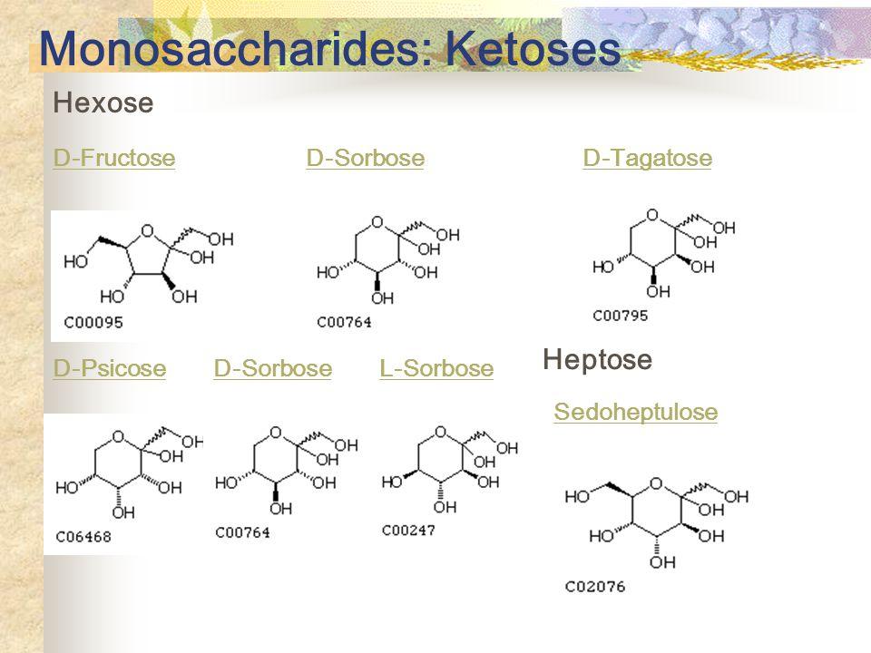 Monosaccharides: Ketoses Hexose D-Fructose D-Sorbose D-Tagatose D-Psicose D-Sorbose L-Sorbose Heptose Sedoheptulose