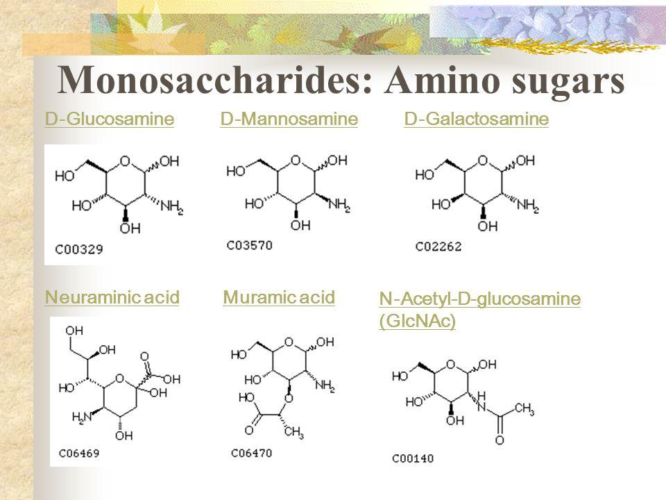 D-Glucosamine D-Mannosamine D-Galactosamine Neuraminic acid Muramic acid N-Acetyl-D-glucosamine (GlcNAc) Monosaccharides: Amino sugars