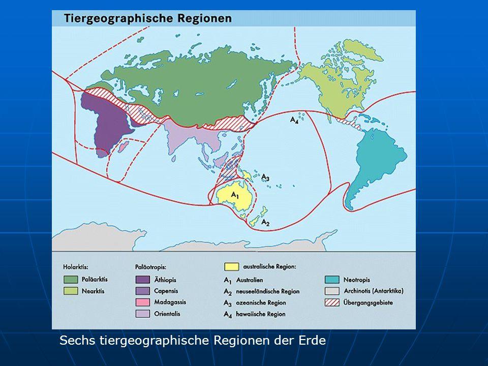 Sechs tiergeographische Regionen der Erde