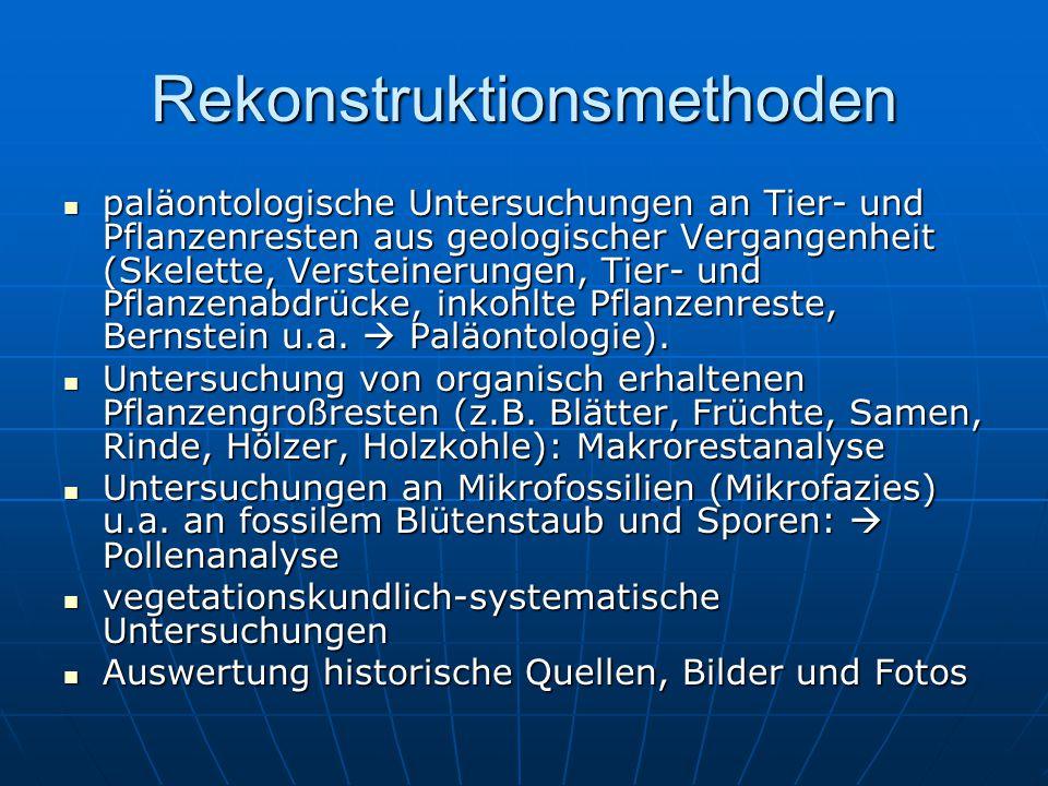 Rekonstruktionsmethoden paläontologische Untersuchungen an Tier- und Pflanzenresten aus geologischer Vergangenheit (Skelette, Versteinerungen, Tier- und Pflanzenabdrücke, inkohlte Pflanzenreste, Bernstein u.a.