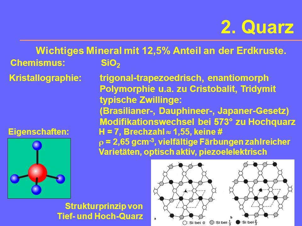 Feldspäte MikroklinLabradorit prismatischer Sanidin im Dünnschliff