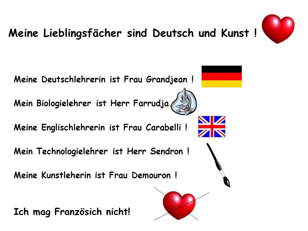 Meine Lieblingsfächer sind Deutsch und Kunst .Meine Deutschlehrerin ist Frau Grandjean .