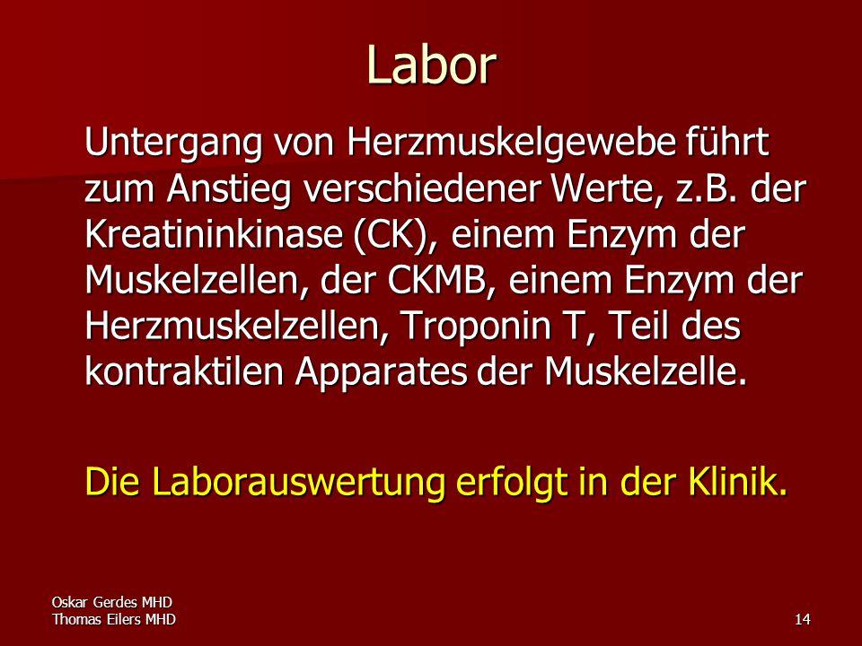 Oskar Gerdes MHD Thomas Eilers MHD14 Labor Untergang von Herzmuskelgewebe führt zum Anstieg verschiedener Werte, z.B. der Kreatininkinase (CK), einem