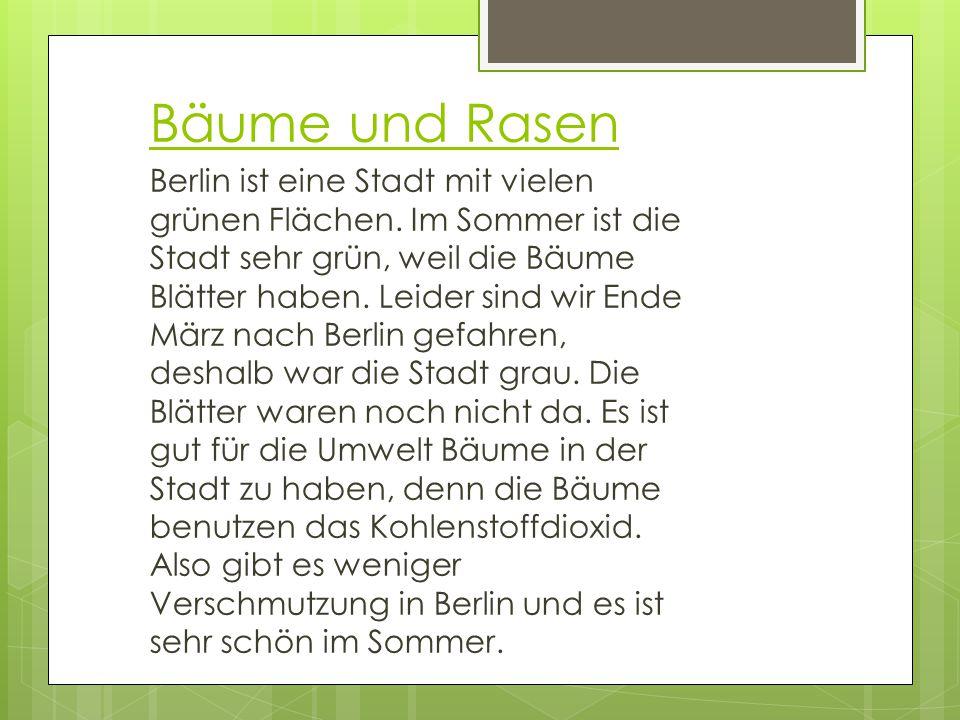 Bäume und Rasen Berlin ist eine Stadt mit vielen grünen Flächen. Im Sommer ist die Stadt sehr grün, weil die Bäume Blätter haben. Leider sind wir Ende