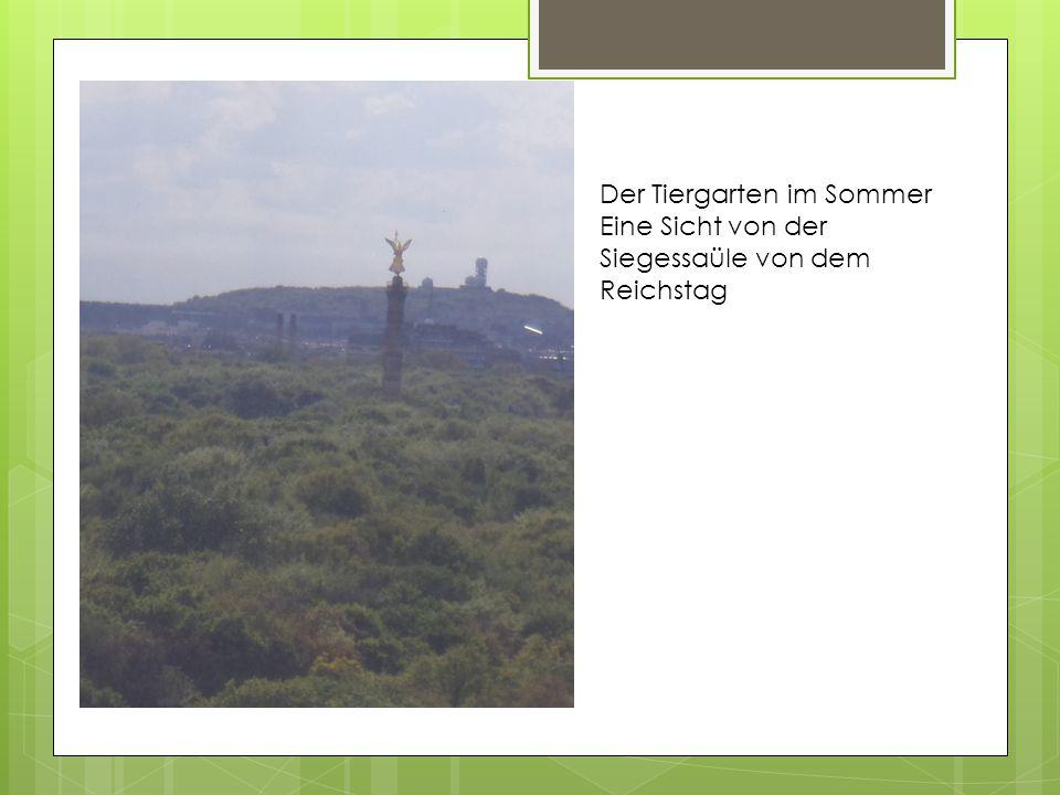 Der Tiergarten im Sommer Eine Sicht von der Siegessaüle von dem Reichstag