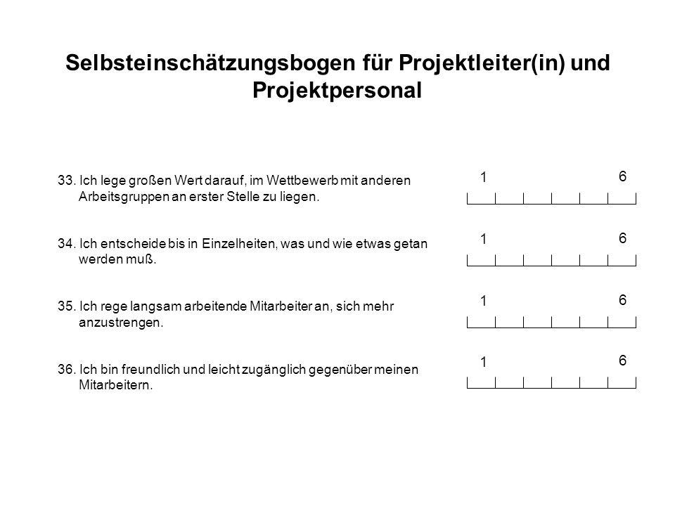 Selbsteinschätzungsbogen für Projektleiter(in) und Projektpersonal 33. Ich lege großen Wert darauf, im Wettbewerb mit anderen Arbeitsgruppen an erster