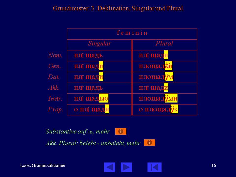 Loos: Grammatiktrainer16 Grundmuster: 3.
