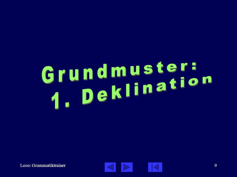Loos: Grammatiktrainer9