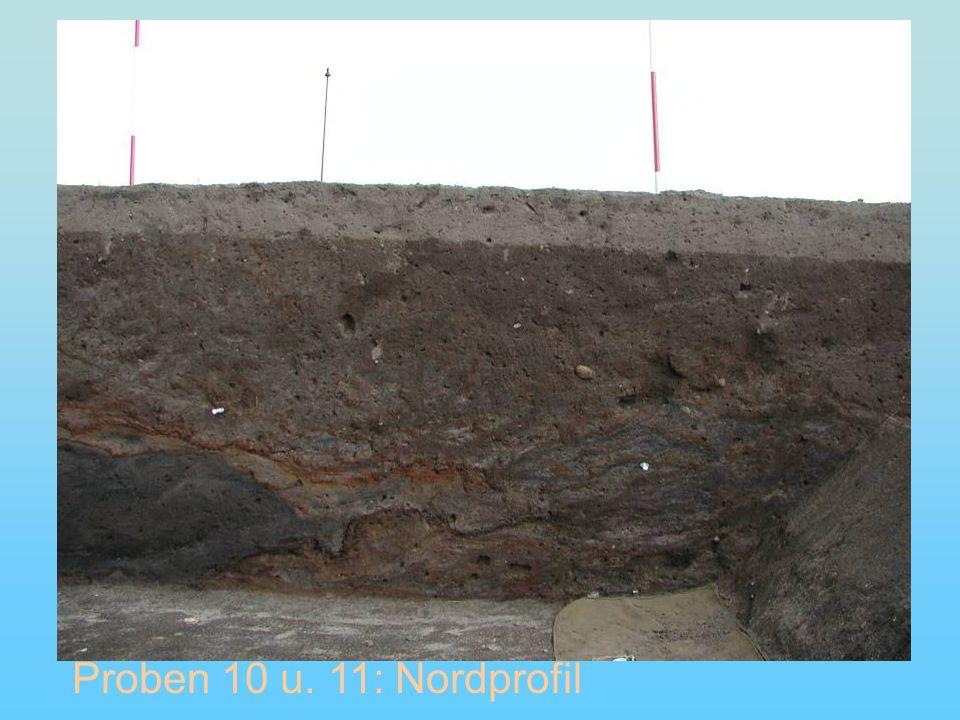 Proben 10 u. 11: Nordprofil