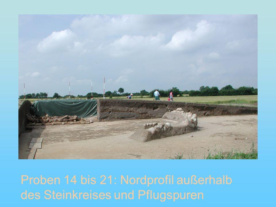Proben 14 bis 21: Nordprofil außerhalb des Steinkreises und Pflugspuren