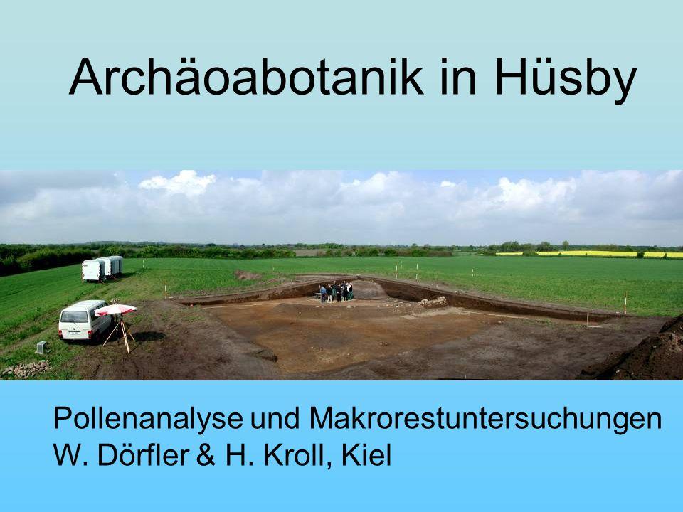 Archäoabotanik in Hüsby Pollenanalyse und Makrorestuntersuchungen W. Dörfler & H. Kroll, Kiel