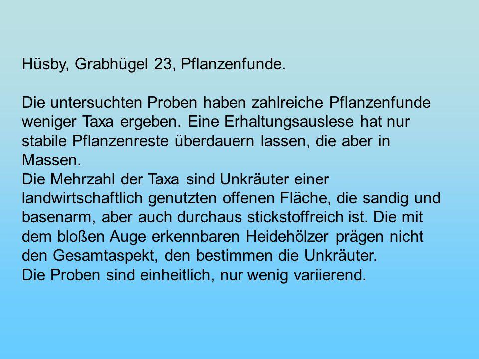 Hüsby, Grabhügel 23, Pflanzenfunde.