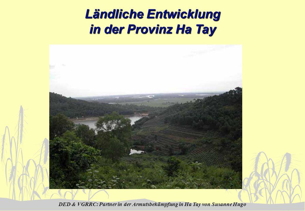 DED & VGRRC: Partner in der Armutsbekämpfung in Ha Tay von Susanne Hugo Ländliche Entwicklung in der Provinz Ha Tay