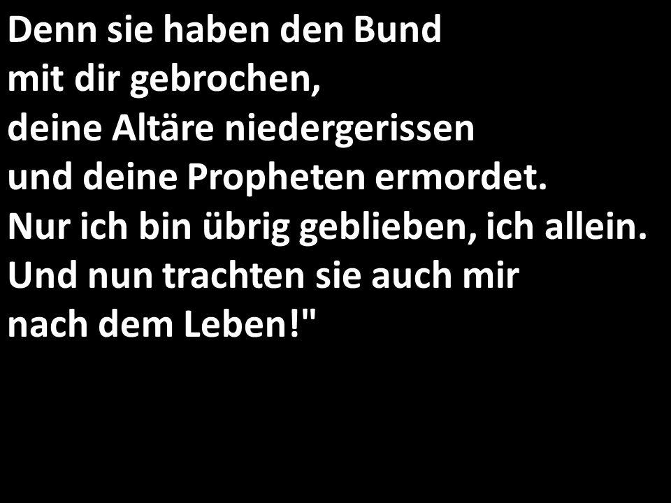 Denn sie haben den Bund mit dir gebrochen, deine Altäre niedergerissen und deine Propheten ermordet. Nur ich bin übrig geblieben, ich allein. Und nun