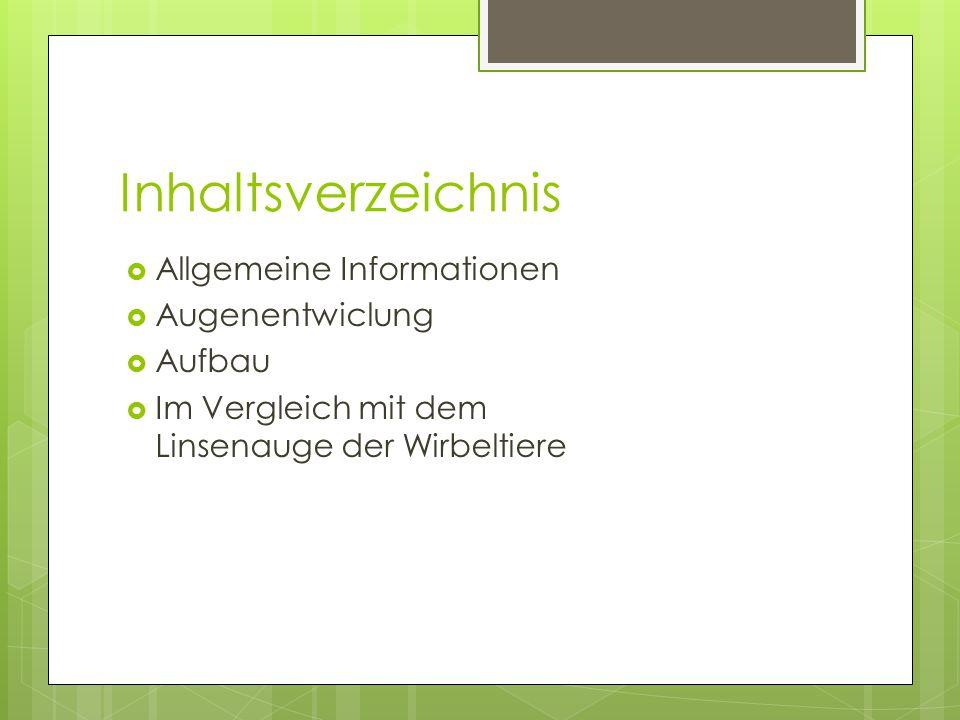 Inhaltsverzeichnis  Allgemeine Informationen  Augenentwiclung  Aufbau  Im Vergleich mit dem Linsenauge der Wirbeltiere