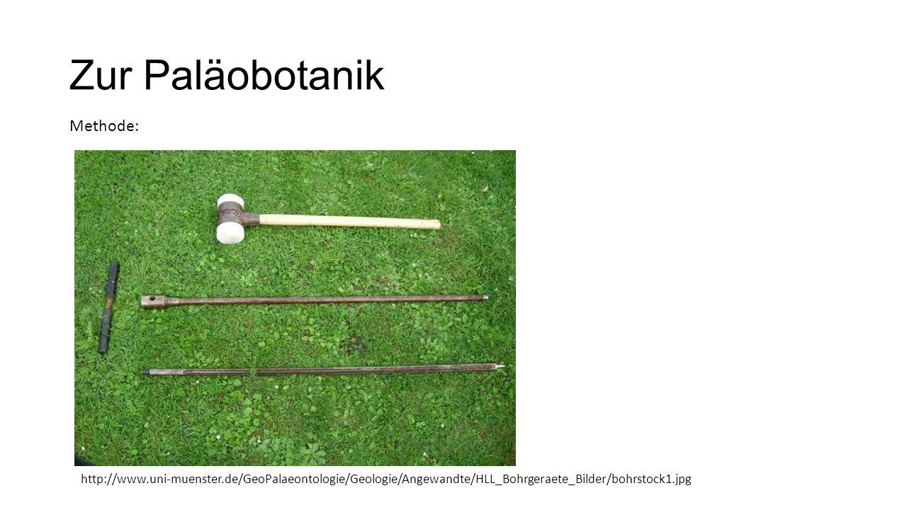Zur Paläobotanik Methode: http://www.uni-muenster.de/GeoPalaeontologie/Geologie/Angewandte/HLL_Bohrgeraete_Bilder/bohrstock1.jpg