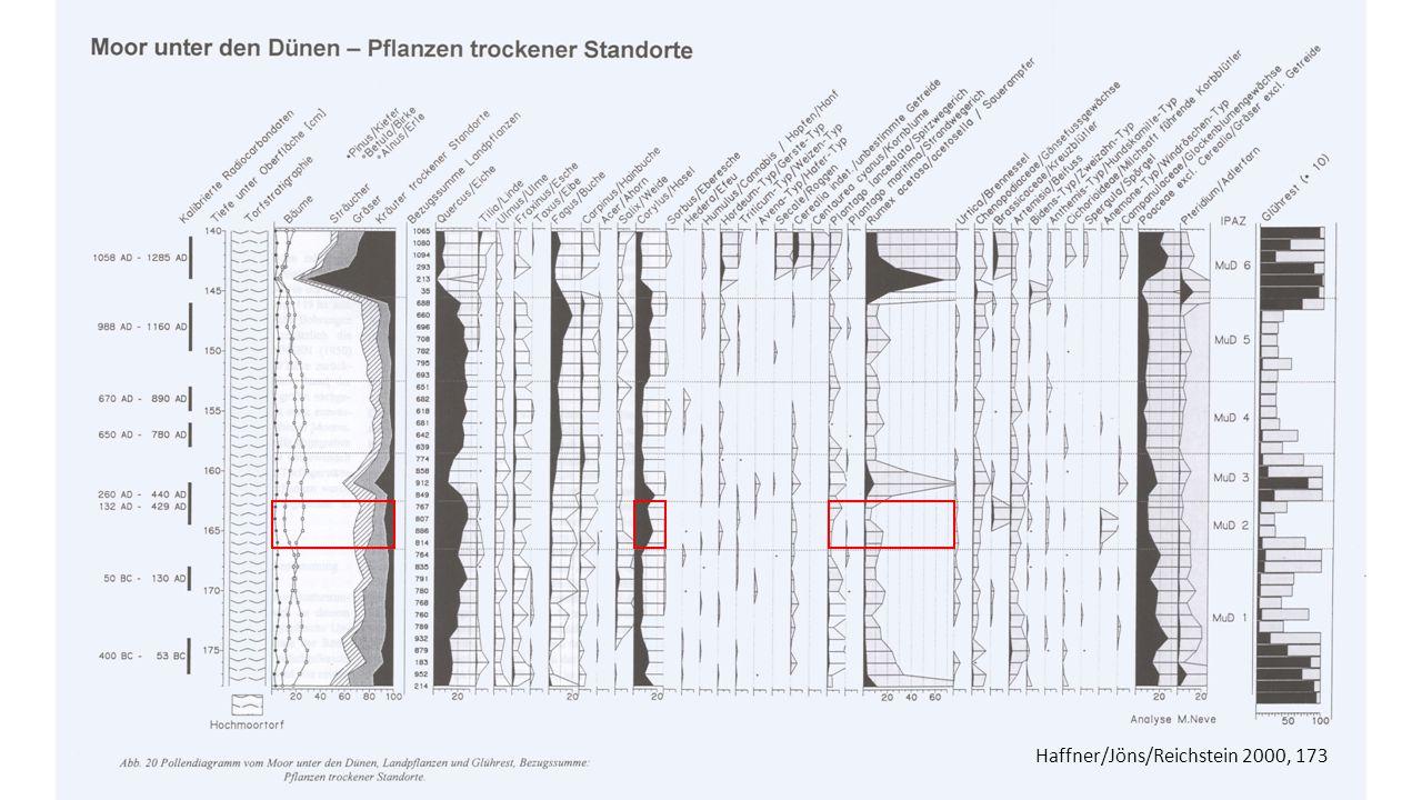 Haffner/Jöns/Reichstein 2000, 173