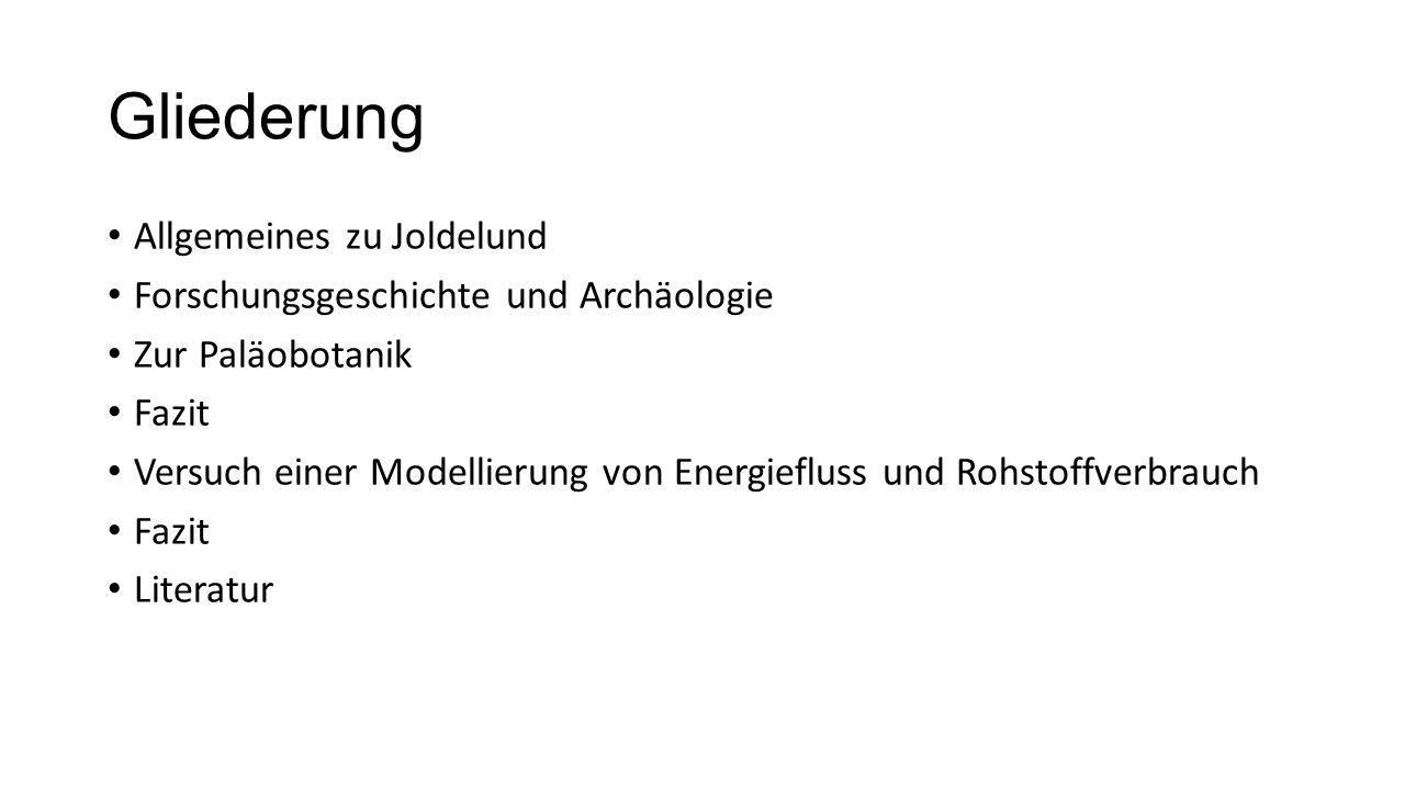 Gliederung Allgemeines zu Joldelund Forschungsgeschichte und Archäologie Zur Paläobotanik Fazit Versuch einer Modellierung von Energiefluss und Rohsto