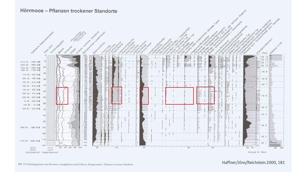 Haffner/Jöns/Reichstein 2000, 181