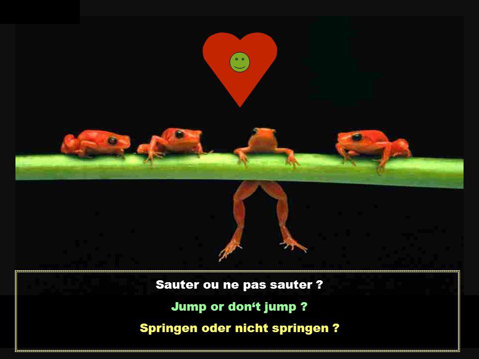 Sauter ou ne pas sauter ? Jump or don't jump ? Springen oder nicht springen ?