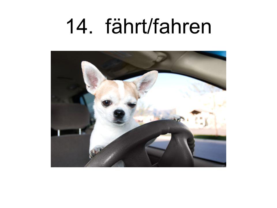 14. fährt/fahren
