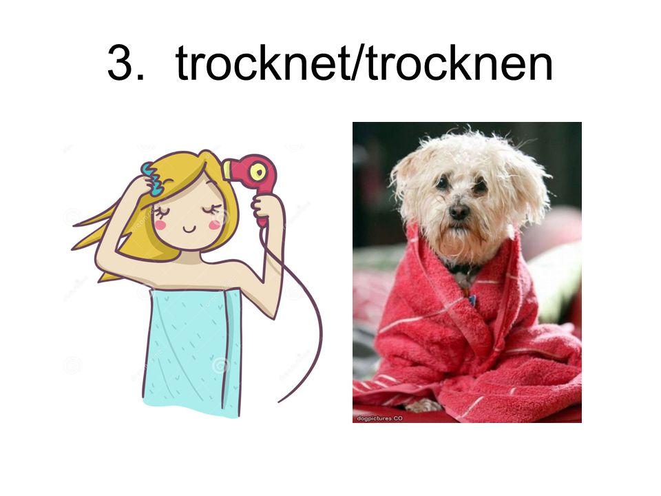 3. trocknet/trocknen