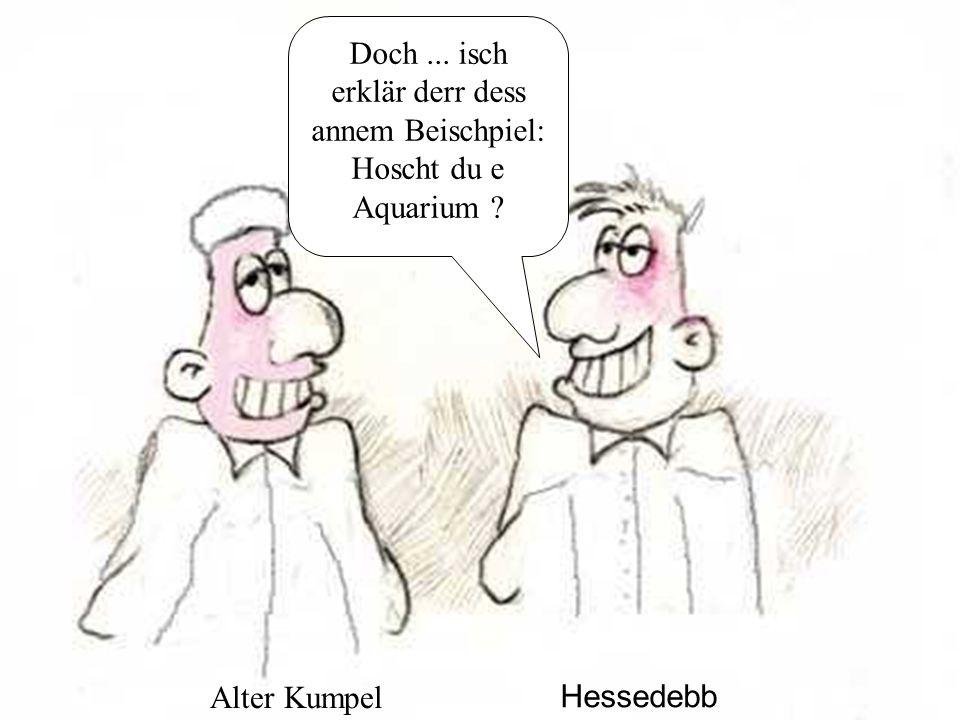 Doch... isch erklär derr dess annem Beischpiel: Hoscht du e Aquarium Hessedebb Alter Kumpel
