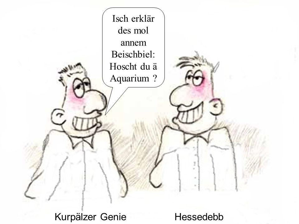 Kurpälzer GenieHessedebb Isch erklär des mol annem Beischbiel: Hoscht du ä Aquarium
