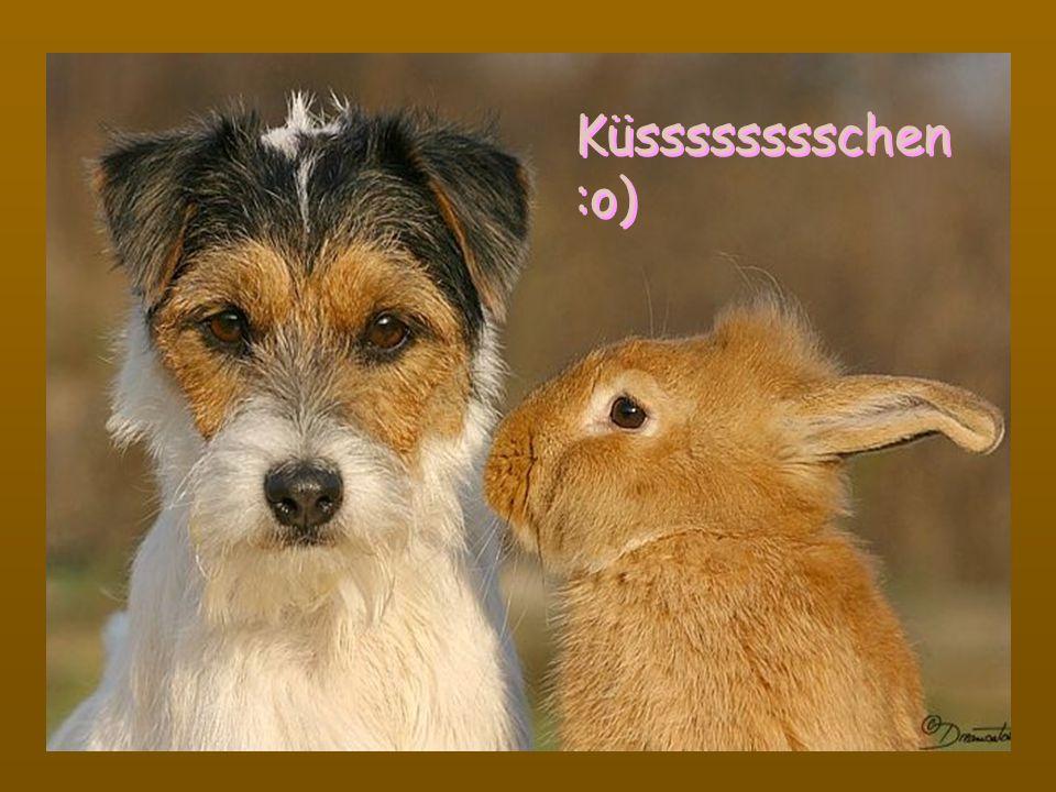 Küsssssssschen :o) Küsssssssschen :o)