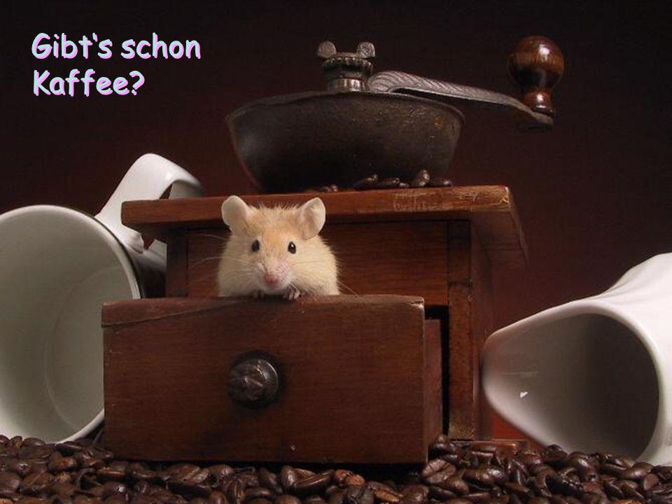 Gibt's schon Kaffee?