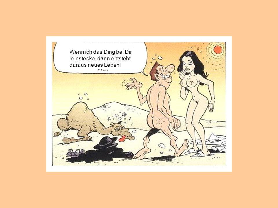 Dann steck Dein DING doch einfach ins Kamel, schenk' ihm neues Leben und wir können WEITERREITEN !!!