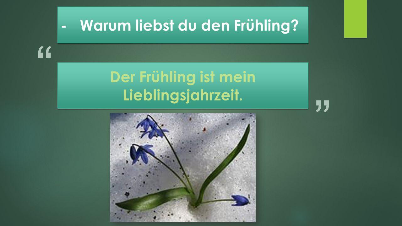 """"""" """" Der Frühling ist mein Lieblingsjahrzeit."""