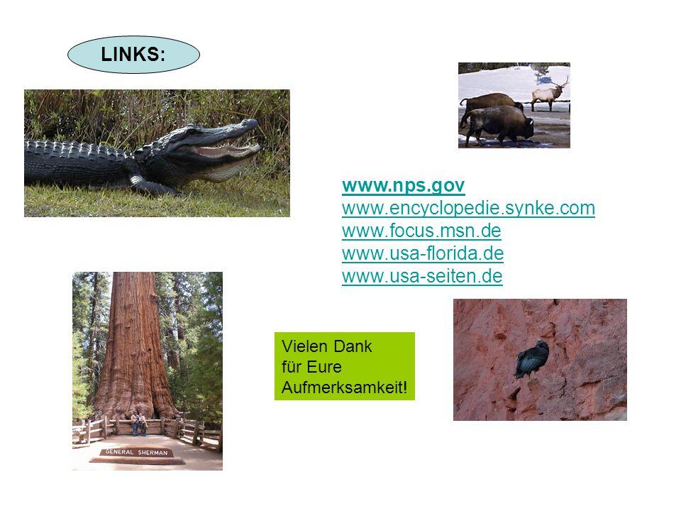LINKS: www.nps.gov www.encyclopedie.synke.com www.focus.msn.de www.usa-florida.de www.usa-seiten.de Vielen Dank für Eure Aufmerksamkeit!