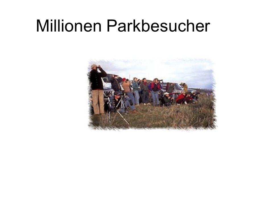 Millionen Parkbesucher