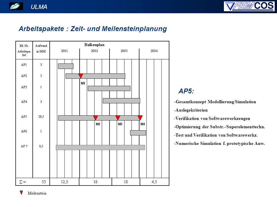 ULMA Arbeitspakete : Zeit- und Meilensteinplanung AP5: - Gesamtkonzept Modellierung/Simulation -Auslegekriterien -Verifikation von Softwarewerkzeugen