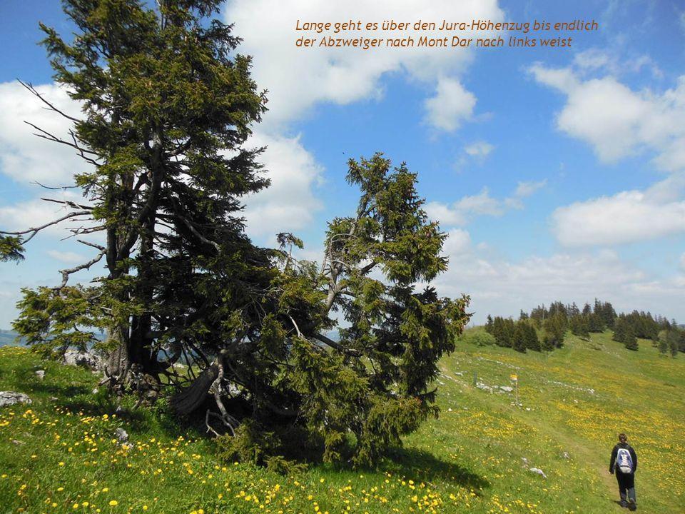Lange geht es über den Jura-Höhenzug bis endlich der Abzweiger nach Mont Dar nach links weist