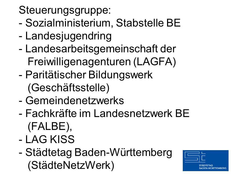 Steuerungsgruppe: - Sozialministerium, Stabstelle BE - Landesjugendring - Landesarbeitsgemeinschaft der Freiwilligenagenturen (LAGFA) - Paritätischer