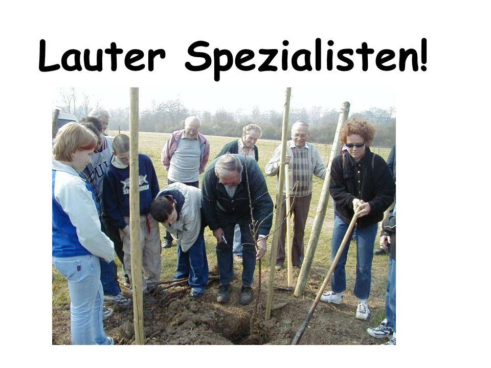 Lauter Spezialisten!