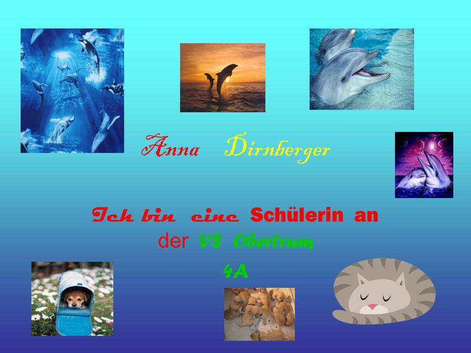 Anna Dirnberger Ich bin eine Schülerin an der VS Obertrum 4A