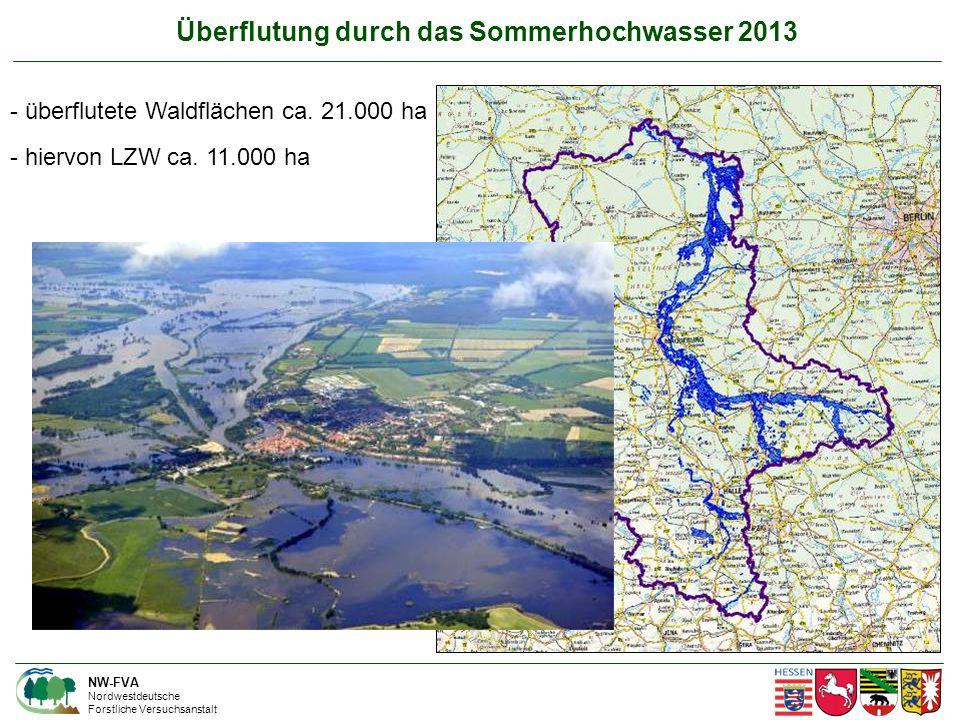 Überflutung durch das Sommerhochwasser 2013 NW-FVA Nordwestdeutsche Forstliche Versuchsanstalt - überflutete Waldflächen ca.