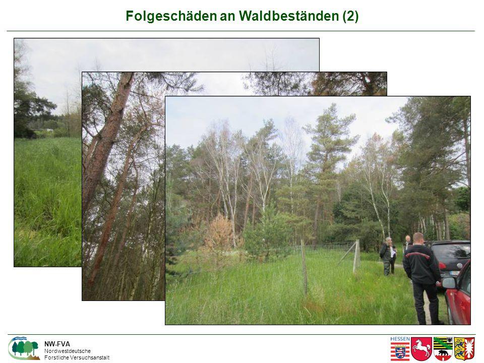 Folgeschäden an Waldbeständen (2) NW-FVA Nordwestdeutsche Forstliche Versuchsanstalt