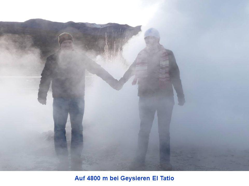 Auf 4800 m bei Geysieren El Tatio